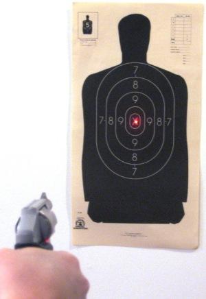 Image result for target laser sight